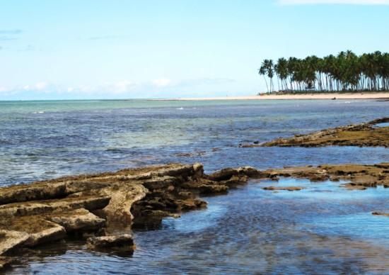 Praia dos Carneiros: como chegar e o que fazer neste paraíso de Pernambuco