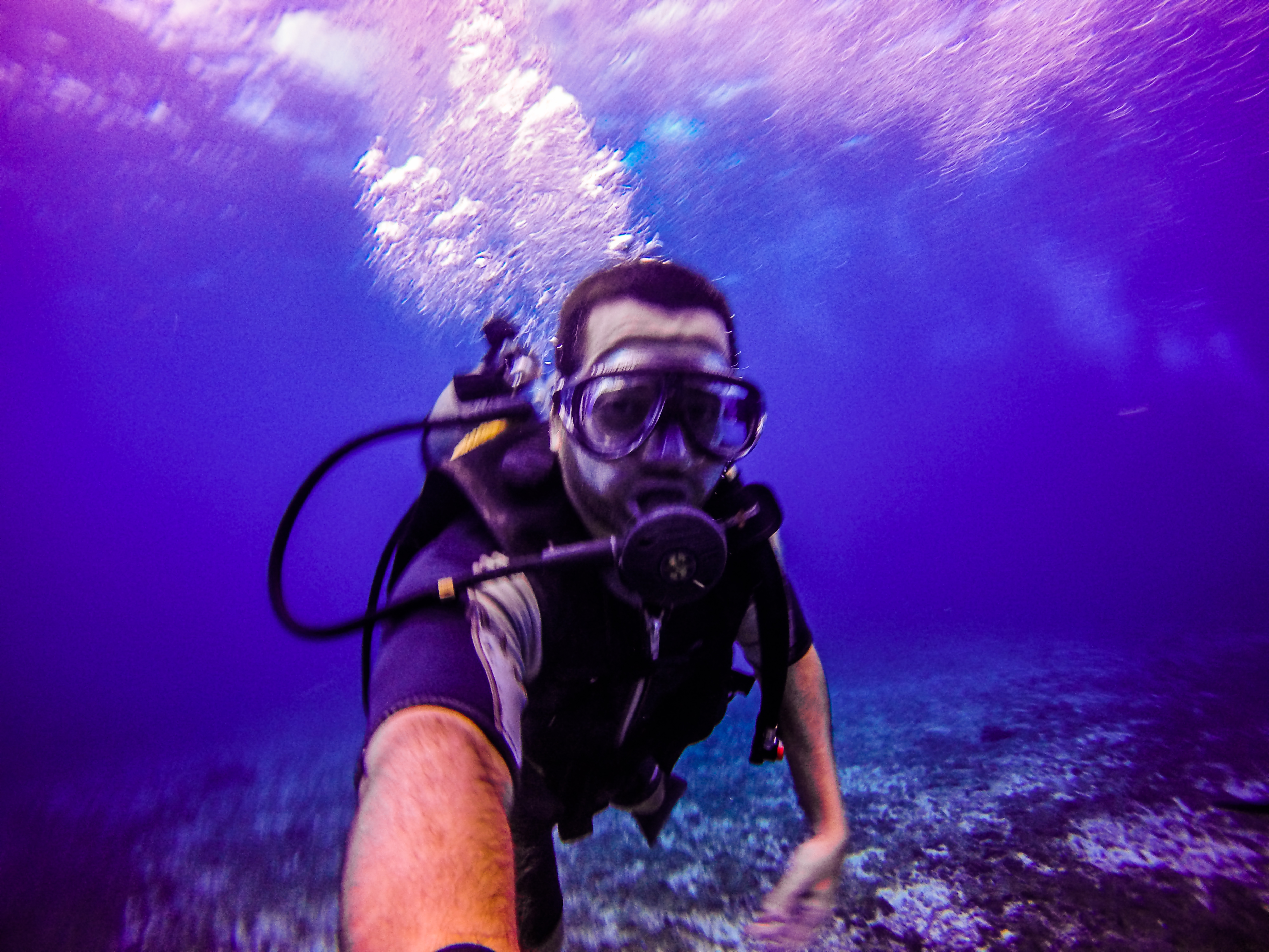 mergulho em noronha