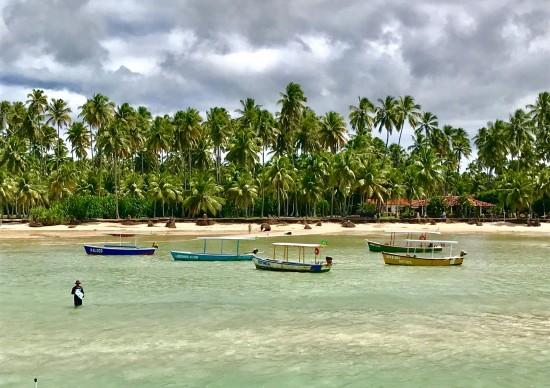 Praia de Carneiros: como ir e o que fazer neste paraíso pernambucano!