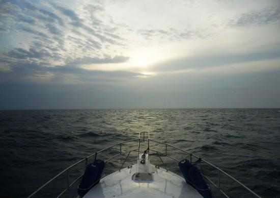 Final de Temporada: como ir ao parque nacional de Abrolhos ver as baleias jubarte